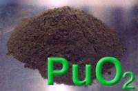 pu[1]_0