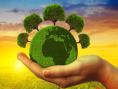 environmental-protection-1-463x348